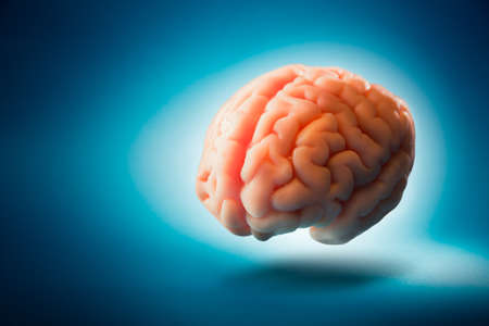 systems thinking: Human brain floating on a blue background