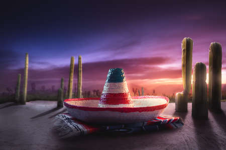 High contrst image of Mexican hat on a serape in a desert at night