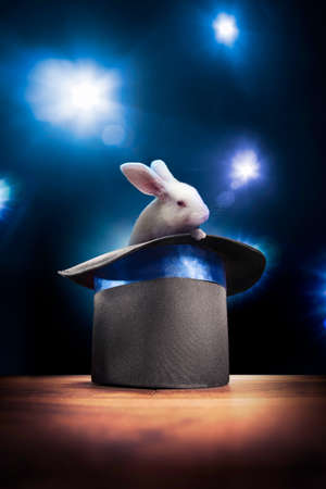 sorcery: photo composite of a bunny in a magic hat on a stage