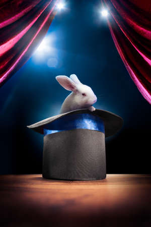 illusionist: photo composite of a bunny in a magic hat on a stage