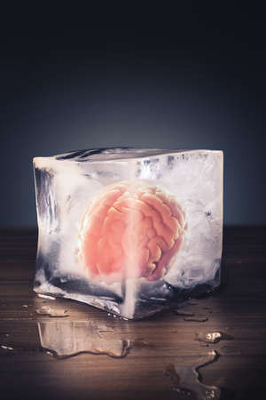brain freeze concept with brain inside an ice cube Reklamní fotografie