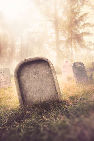 graveyard with fog with dramatic lighting Banque d'images
