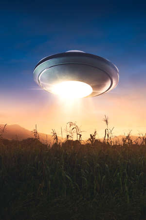 grey: UFO Flying over a corn field at sunset