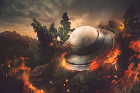 UFO crash in the forest Stock Photo