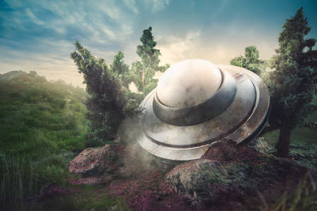visitors area: UFO crash in the forest Stock Photo