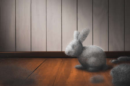 Cleaning the house concept with dust bunny on a dirty floor / mixed media, 3D Elements in this image