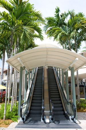 Escalator outdoors surrounded by lush palm trees  Banco de Imagens