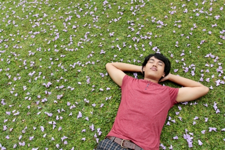lying in grass: hombre feliz asi�tico tendido sobre la hierba relajante Foto de archivo