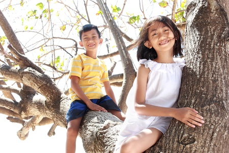 Two little children sitting on the tree photo