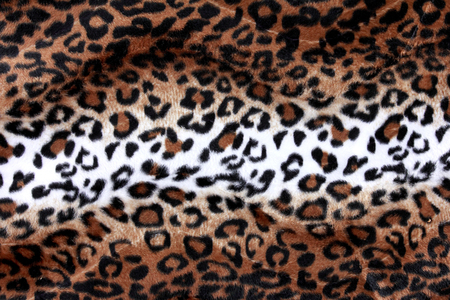 wild hair: Texture of leopard skin ready to use for your design Stock Photo