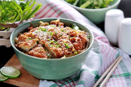 portrait of japanese rice bowl dish chicken katsudon on green bowl Stock Photo
