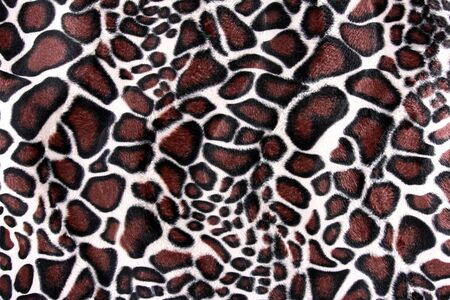 pelt: close up of beautiful tiger fur - colorful texture with orange, beige, and black