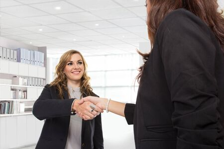 deal making: A portrait of a two young businesswoman making a deal and shaking hands in the office