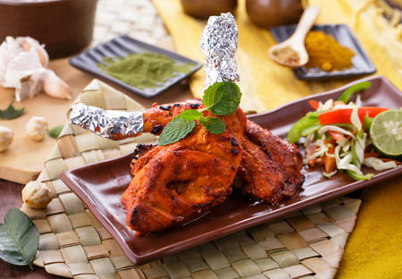 portrait of delicious indian tandoori chicken