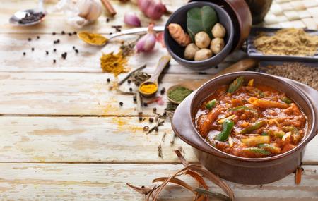 周りの調味料とコピー領域インド野菜 jalfrezi の肖像画 写真素材