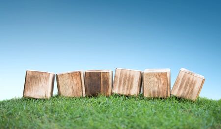 green life: close up still life portrait of wooden blocks on a green grass, ready for your text Stock Photo