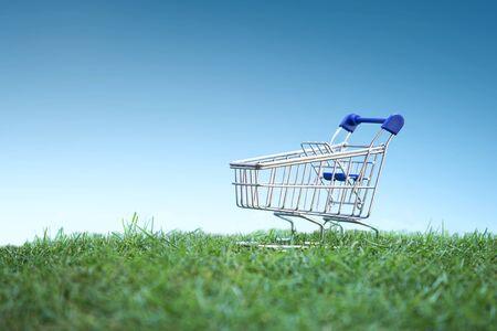 consumerism: Green Shopping, Environmentally Responsible Consumerism Concept idea