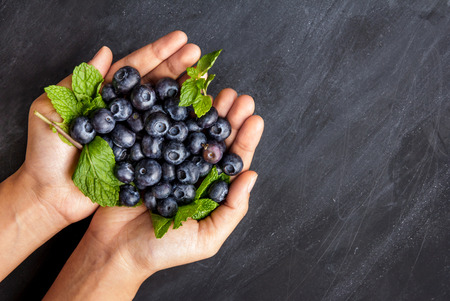 fresh blueberries in hands on black board for background with copy space Imagens