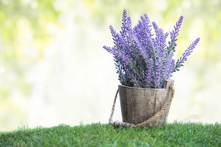 artificial flowers: A portrait of a bunch of violet flowers on a wooden pot in green grass. with bokeh background Stock Photo