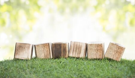 natural backgrounds: close up still life portrait of wooden blocks on a green grass, ready for your text with bokeh background
