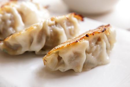 gyoza: close up portrait of japanese food gyoza dumplings