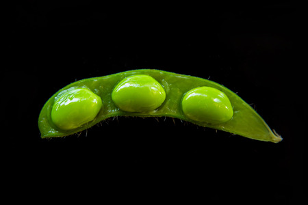close up food: close up portrait of japanese food edamame nibbles, boiled green soy beans Stock Photo