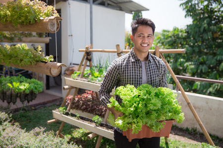 happy young man holding a bucket full of lettuce in front of his urban farm