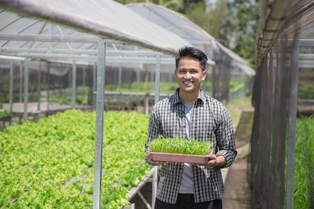 jonge man met een kleine jonge groene plant. nieuw leven concept Stockfoto