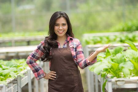 pretty asian female farmer showing her plant inside the greenhouse Stock Photo