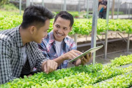 Dos trabajadores masculinos asiáticos que usan la tableta en la granja hydrophonic. concepto de agricultura moderna Foto de archivo - 92565263