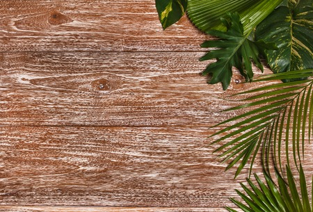top view portrait of mix tropical leaves nature layout on rustic wooden background with copy space