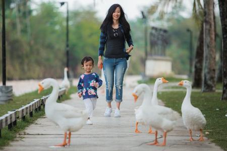 娘と母はガチョウと遊んで楽しむ 写真素材