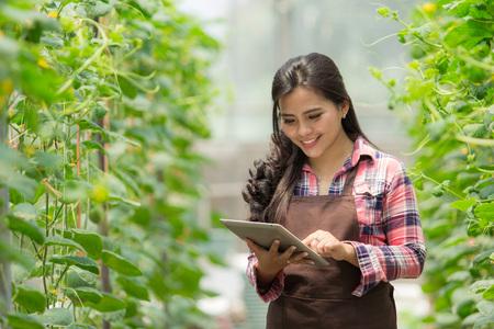agricultor feminino com tablet Foto de archivo
