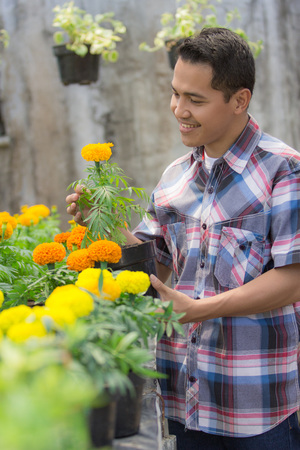 asian male florist working in flower shop Stock Photo