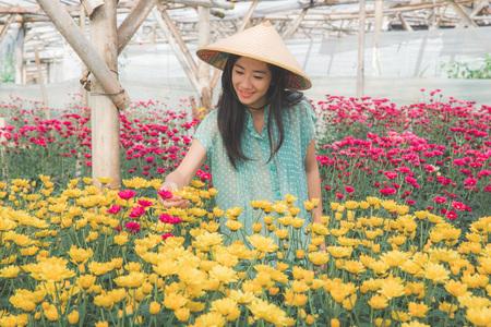 カモミールの花農場で働く若いアジアの女性 写真素材
