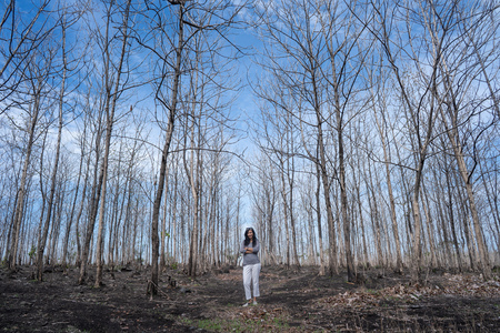 woman standing in the middle of the wood with leafless trees Banque d'images