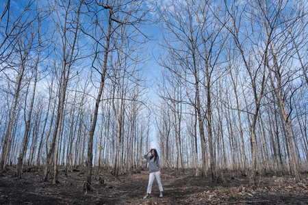 woman standing in the middle of the wood with leafless trees Imagens