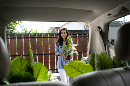 woman with plant and tree in her car trunk 版權商用圖片 - 116495259