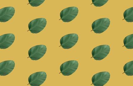 tropical green leaf pattern