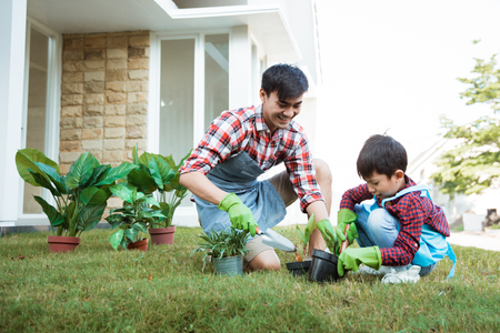 father and son gardening at home in the morning