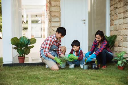 famiglia e bambino spruzzano acqua su una giovane pianta nel vaso di casa Archivio Fotografico