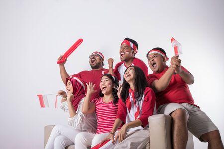 Unterstützer schaut sich ein Match an Standard-Bild