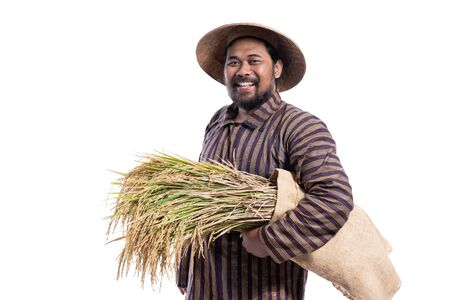 farmer with javanese traditional cloth holding rice grain