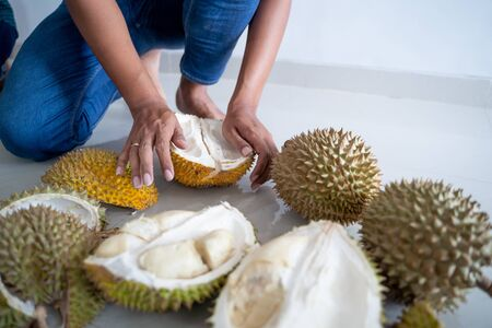 close up gesture of hand opening durian fruit
