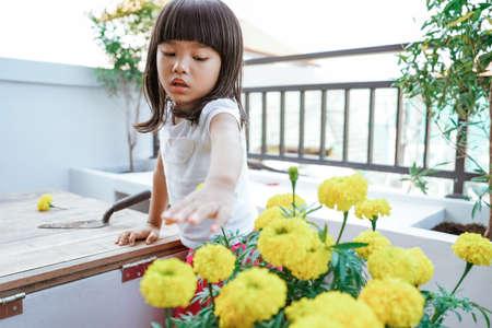 asian toddler gardening at home Standard-Bild