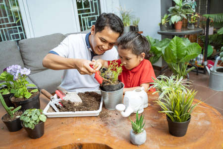 father and his daughters are planting potted plants