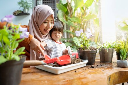 Asian mother helps her daughter take soil with a small shovel from a tray for planting media Stockfoto