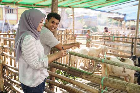 man and woman farmer at their farm checking the animal