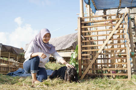 muslim female farmer feeding animal