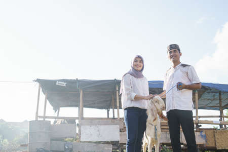 muslim couple buy a goat for eid adha sacrifice or idul qurban